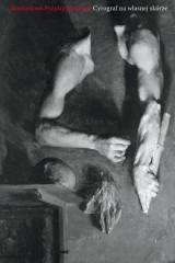 Cyrograf na własnej skórze