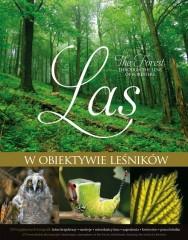 Las w obiektywie leśników