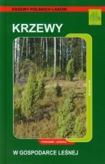 Krzewy w gospodarce leśnej