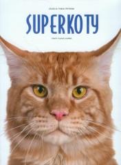 Superkoty