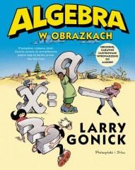 Algebra w obrazkach