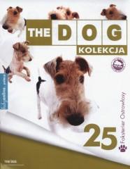The Dog Foxterier ostrowłosy