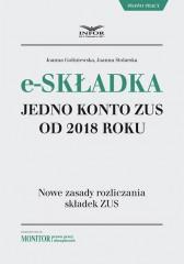 E-składka jedno konto w ZUS od 2018 roku