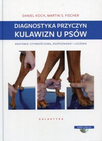Diagnostyka przyczyn kulawizn u psów
