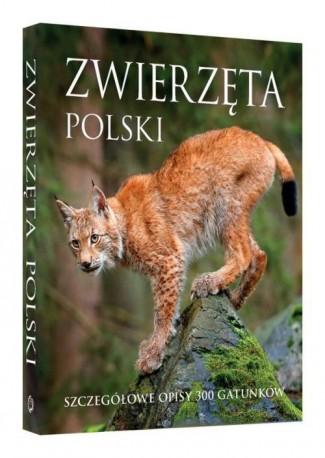 Zwierzęta Polski.