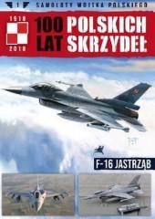 Samoloty Wojska Polskiego 100 lat polskich skrzydeł Tom 1